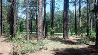 3376 Red Robin Road Pinetop AZ, 85935