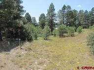 249 E Golf Pagosa Springs CO, 81147