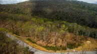 Green Ridge Trails - Lot #8 Harriman TN, 37748