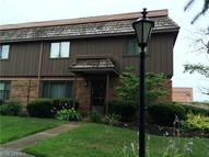 7050 Chillicothe Rd Unit: D-1 Mentor OH, 44060
