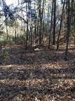 6 Acres W Mahan Rd Bonnerdale AR, 71933