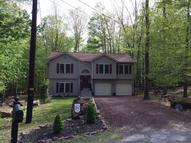 207 Snow Valley Circle Drums PA, 18222
