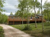 645 Beaver Creek Road Fairplay CO, 80440