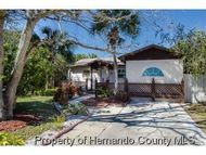 3619 Eagle Nest Dr Hernando Beach FL, 34607