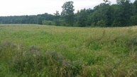 0 Cabbage Patch Road Tract 4 Altamont TN, 37301