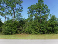 Lot 94 Blue Ridge Boulevard Mossy Head FL, 32434