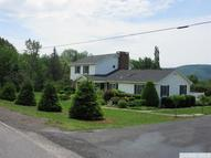 5999 County Route 23c Prattsville NY, 12468