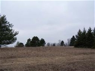 Lot 1071 S Dutch Hollow Rd La Valle WI, 53941