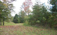 Lt 10 Walnut Trace Lot 10 Mineral Bluff GA, 30559