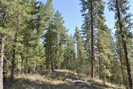 Lot 20 Virginia Hills Winthrop WA, 98862