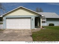 5317 Birchwood Rd Spring Hill FL, 34608