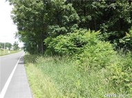 Lot 1 State Route 49 West Monroe NY, 13167