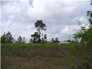 Lot 15 Willow Drive Crestview FL, 32539