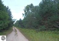 17.22 Acres Nine Mile Road Kaleva MI, 49645
