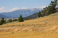 Lot 8 Visions  West Tbd Cokedale Road Livingston MT, 59047