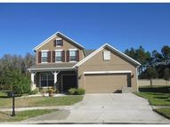 23048 Wood Violet Court Land O Lakes FL, 34639