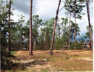Lot 326 Sunny Drive Donalsonville GA, 39845