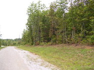 Lot 80b Parkstown Road Wilder TN, 38589