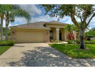 12336 Wycliff Place Tampa FL, 33626