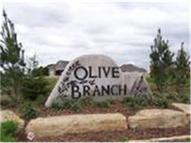 Olive Branch Court Peculiar MO, 64078