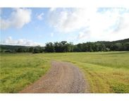 Holt Forge (20 Acres) Road Altus AR, 72821