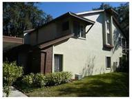 604 Fairmont Avenue D Safety Harbor FL, 34695