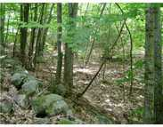 Lot 5 Rolling Brook Road Raymond ME, 04071
