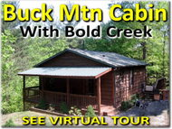 2203 Staghorn Rd Purlear NC, 28665