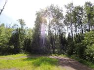 Lot 5 Pendant Lake  Trail Grand Marais MN, 55604