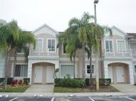 18193 Paradise Point Drive Tampa FL, 33647