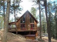 95 Pine Lane Woodland Park CO, 80863