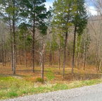 Lot 22 Shoreside Drive Smithville TN, 37166