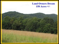 Tbd Off Swaringen Road Traphill NC, 28685