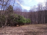 13833 State Route 38 Richford NY, 13835