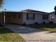 3291 Minnow Creek Hernando Beach FL, 34607