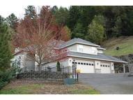 226 Gray Squirrel Ct Winchester OR, 97495