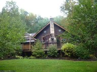 868 Buffalo Calf Road Salem WV, 26426
