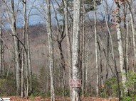 60 Secret Hollow Trail Lot # 170 Secret Hollow Trail Marietta SC, 29661