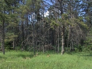 Lot 8 Plum Lake Dr Sayner WI, 54560
