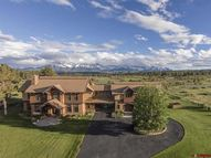 11893 County Road 1 Ridgway CO, 81432