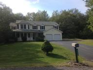519 Stone Hedge Place Mountain Top PA, 18707