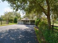 30537 Cinnamon Road Sorrento FL, 32776