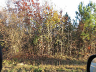 Lot 3 Country Pond Road Chappells SC, 29161