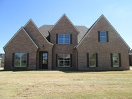 4780 Rosepetal Cove Southaven MS, 38672