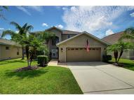 19121 Cypress Reach Lane Tampa FL, 33647