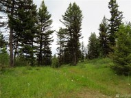 Combined Lots 1 And 2 Rd Oroville WA, 98844