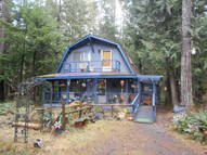 38119 565th Ct E Brinnon WA, 98320