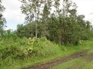 Road 9 (Koloa Maoli) Lot #: 5586 Kurtistown HI, 96760
