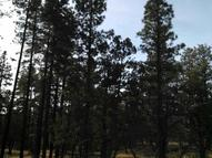 38 Acres Porter Mountain And Sponsellor Lakeside AZ, 85929