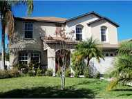 14632 Tullamore Loop Winter Garden FL, 34787